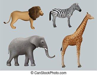 vettore, realistico, animali, safari, animals., leone africano, zebra, viaggiante, giraffa, decente, selvatico, esterno, elefante, collezione