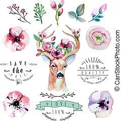 vettore, set, colorito, flor, mano, acquarello, deer., floreale, disegnato