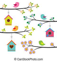 vettore, set, uccelli, birdhouses.