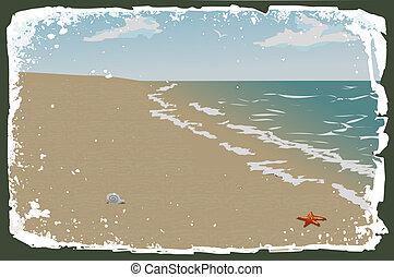 vettore, spiaggia