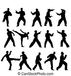 vettore, -, taekwondo-fighter