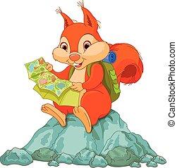 viaggiatore, scoiattolo