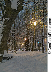 viale, coperto, snow., fresco