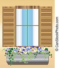 viola del pensiero, scatola, finestra