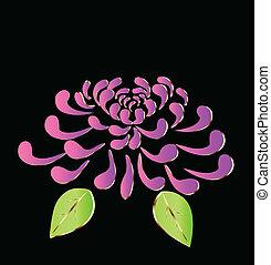 viola, fiore loto, logotipo