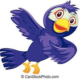 viola, uccello bianco, fondo