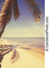 vista, arte, fondo, bello, spiaggia, retro