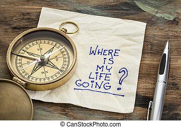 vita, mio, dove, andare