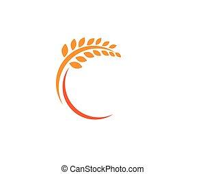 vita, sagoma, logotipo, icona, vettore, sano, frumento, agricoltura