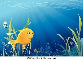 vita subacquea, fish, oro, -, vettore