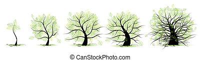 vita, vecchio, tree:, età, gioventù, età adulta, infanzia, palcoscenici, adolescenza