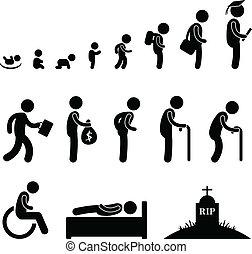 vita, vecchio, umano, studente, bambino, bambino