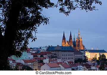 vitus's, cattedrale, santo