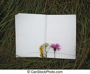 vuoto, fondo, quaderno, erba