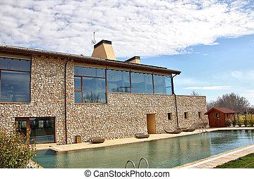 windows, casa, grande, moderno, stagno