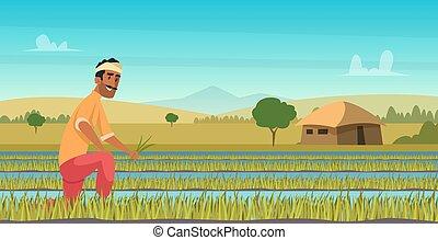 working., raccolta, contadino, campo, fondo, cartone animato, stile, indiano, agricoltura, vettore, asia