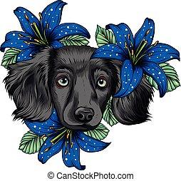 wreath., fiore, illustration., testa, spaniel, vettore, ritratto, cane