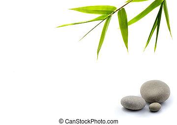 zen, fondo