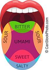 zone, assaggio, sapore, aspro, dolce, diagramma, receptors., assaggiare, vettore, salato, illustrazione, umano, zones., umami, lingua, amaro, cartone animato